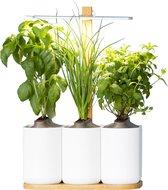 Lilo, de indoor smart garden van Prêt à Pousser - Kweek heel het jaar door verse groenten, kruiden en bloemen - Inclusief Basilicum, Munt en Bieslook