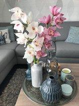 Orchidee 2 takken roze/wit (cymbidium)
