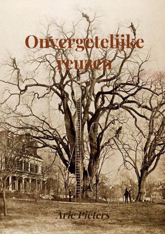 Onvergetelijke reuzen - Arie Pieters | Readingchampions.org.uk