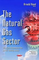 Natural Gas Sector