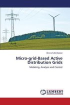 Micro-Grid-Based Active Distribution Grids