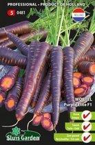 Sluis Garden - Wortel, Betasweet Purple Elite F1