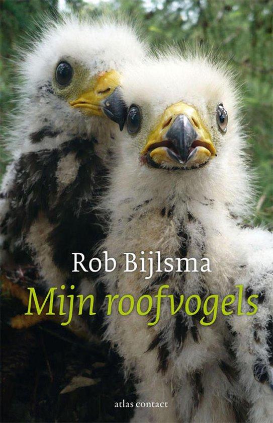 Mijn roofvogels - Rob Bijlsma |