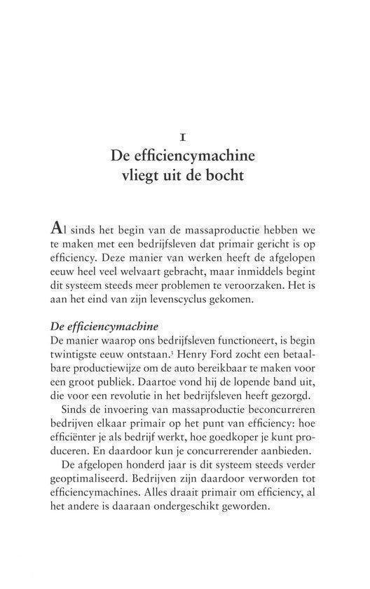 Van CEO naar tuinman - Evert Jan van Hasselt |