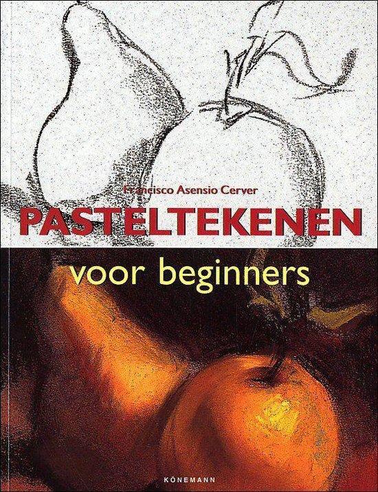 Pasteltekenen Voor Beginners - Francisco Asensio Cerver | Fthsonline.com