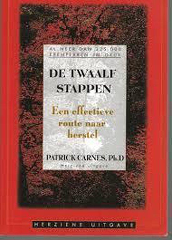 De Twaalf Stappen : een vriendelijke leidraad naar herstel - P.J. Carnes |