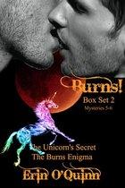 Omslag Burns! Box Set Two (Mysteries 5-6)