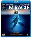 Big Miracle (bluray)