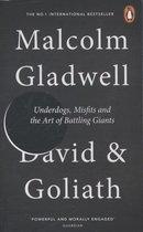 Afbeelding van David and Goliath