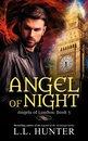 Omslag Angel of Night
