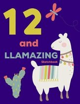 12 and Llamazing Sketchbook