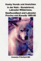 Husky Hunde Und Ansichten in Der Nain - Nunatsiavut