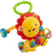 Fisher-Price Muzikale Leeuw Babywalker - Looptrainer