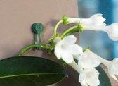 3 stuks Plantenklemmen groen dia. 15mm set a 15 stuks