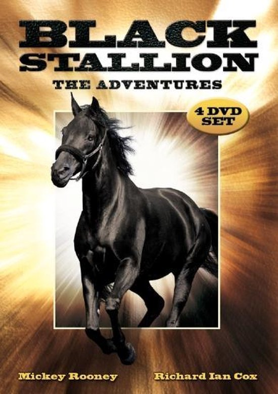 Cover van de film 'Black Stallion'