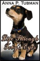 Life Through Toby's Eyes
