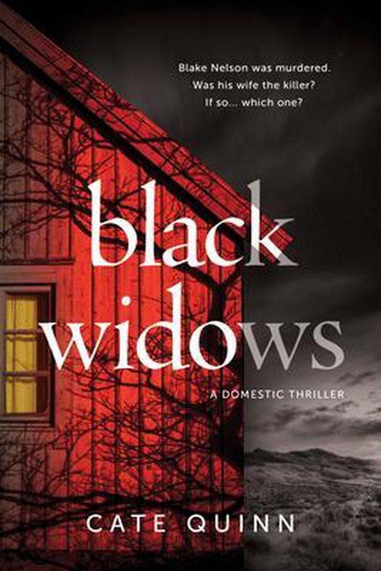 Boek cover Black Widows van Cate Quinn (Paperback)
