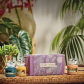 Yankee Candle The Last Paradise - 3 Small Jar Giftset