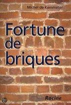 Fortune de briques
