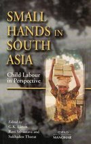 Omslag Small Hands in South Asia