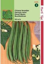 Struikprinsessenbonen Miracle Chinese boontjes 25 gram