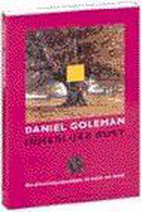 Innerlijke rust - Daniel Goleman |