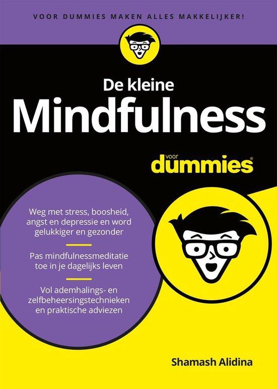 Voor Dummies - De kleine Mindfulness voor Dummies - Shamash Alidina pdf epub