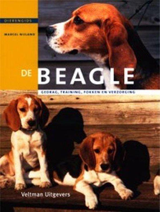 De Beagle - M. Nijland |