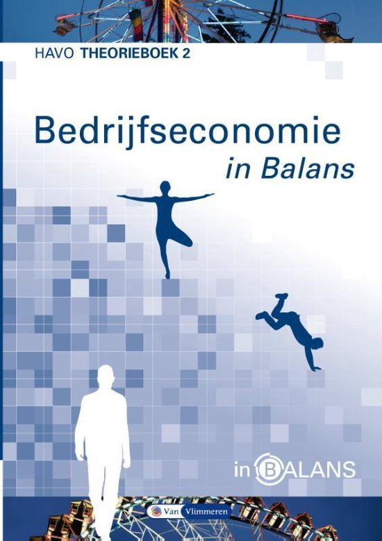 Bedrijfseconomie in Balans Havo Theorieboek 2 - Sarina van Vlimmeren |
