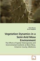 Vegetation Dynamics in a Semi-Arid Mesa Environment