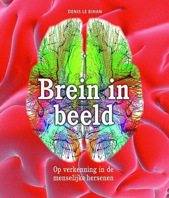Wonderbaar bol.com | Brein in beeld, Denis Le Bihan | 9789085714156 | Boeken UX-39