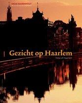 Gezicht op Haarlem = View of Haarlem