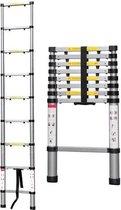 Telescopische Ladder - 9 treeds - Werkhoogte 2.60m
