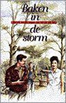 Baken in de storm
