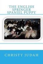 The English Springer Spaniel Puppy