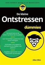 Voor Dummies - De kleine ontstressen voor Dummies
