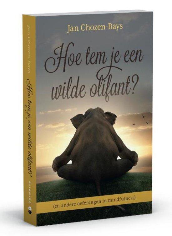Cover van het boek 'Hoe tem je een wilde olifant?'