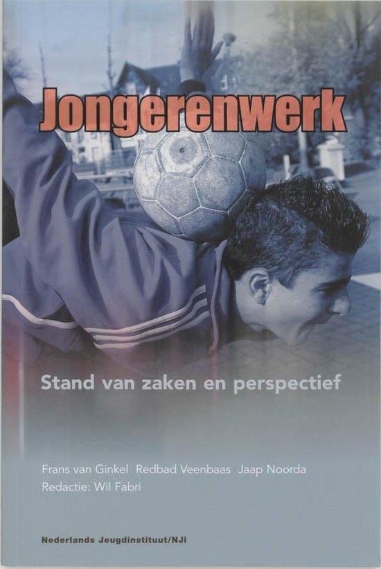 Boek cover Jongerenwerk in Nederland van F. van Ginkel (Paperback)
