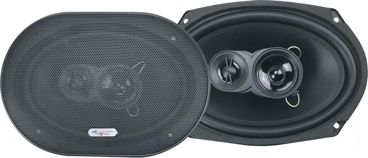 Excalibur X693 Ovale 6''x9'' Speakers (100Wrms)