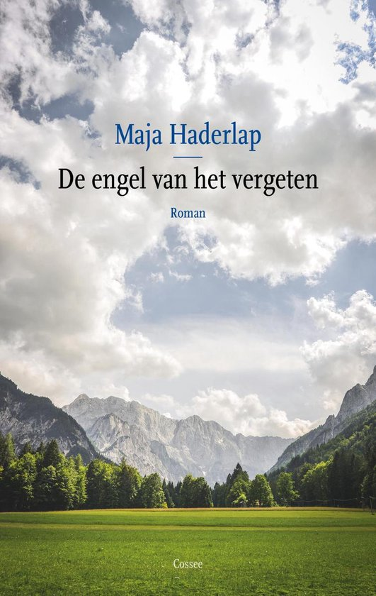 De engel van het vergeten - Maja Haderlap |