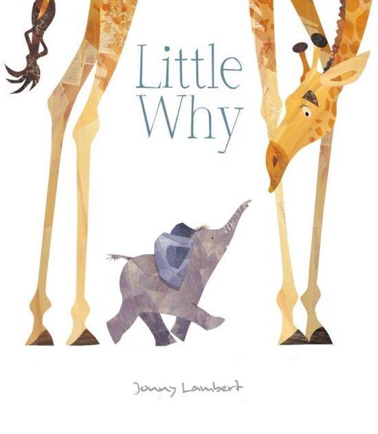 Boek cover Little Why van Jonny Lambert (Hardcover)