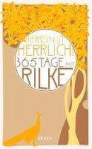 """Hiersein ist herrlich."""" 365 Tage mit Rilke"""
