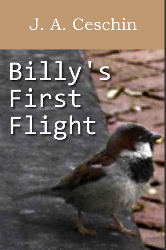 Billy's First Flight