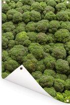 Een foto vol met broccoli's Tuinposter 120x180 cm - Tuindoek / Buitencanvas / Schilderijen voor buiten (tuin decoratie) XXL / Groot formaat!
