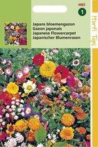 Hortitops Zaden - Japans Bloemengazon