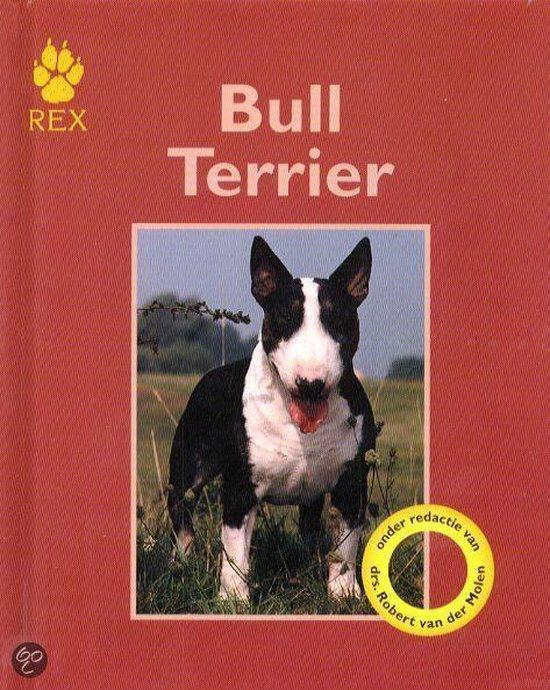 Bull Terrier - Bethany Gibson | Fthsonline.com
