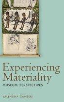 Boek cover Experiencing Materiality van Valentina Gamberi