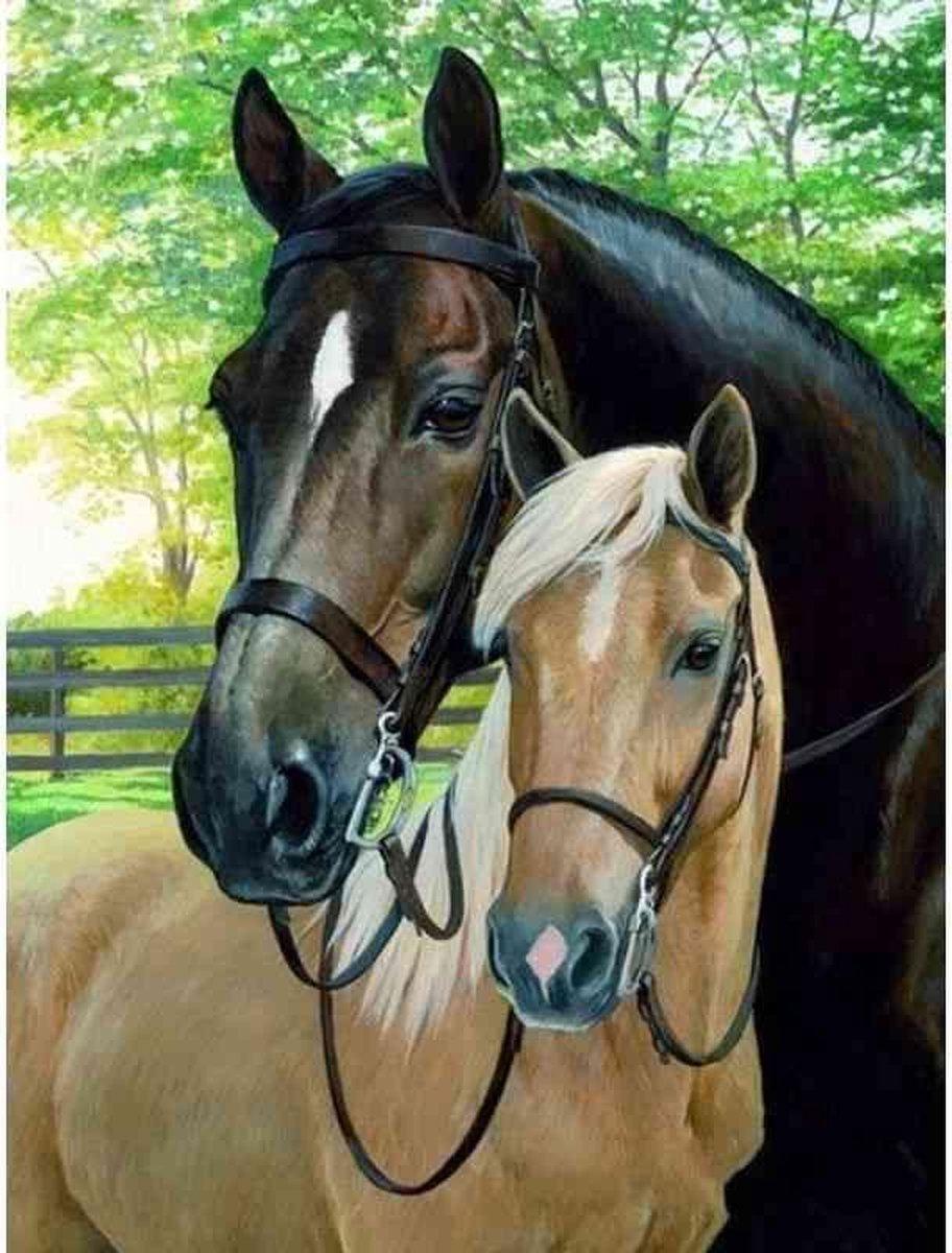 Diamond painting - Twee prachtige paarden - Geproduceerd in Nederland - 40 x 60 cm - canvas materiaal - vierkante steentjes + gratis luxe pen t.w.v. 12,99