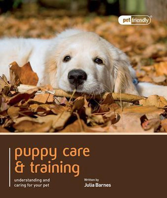 Puppy Training & Care - Pet Friendly