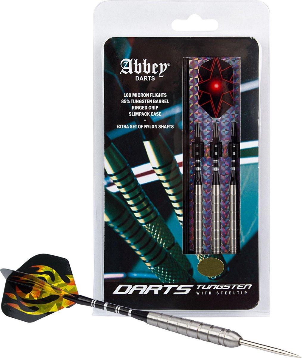 Abbey Darts Darts - 85% Tungsten - Zilver - 26